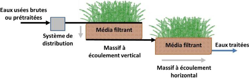 filtrant-massif-plante